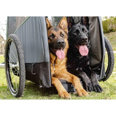 Croozer Dog BRUUNO Hundeanhänger